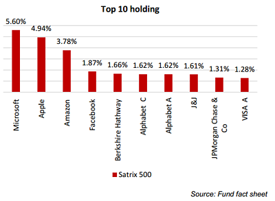 Satrix 500 Aug 2020 Top Holdings
