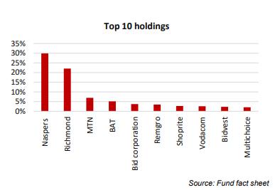 Satrix Indi Top Holdings