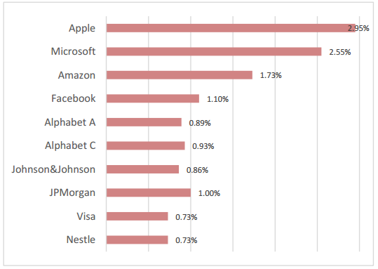 Satrix MSCI World 2020 Aug Top Holdings
